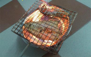 nướng mực khô bằng cồn an toàn